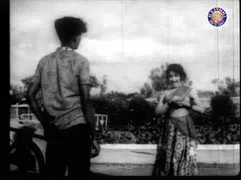 எலந்தப் பயம் விற்கும் விஜயநிர்மலா